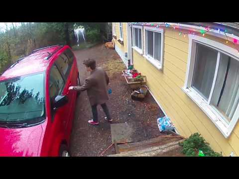 Arlo Pro Security Camera Use Case #163: Package Delivery