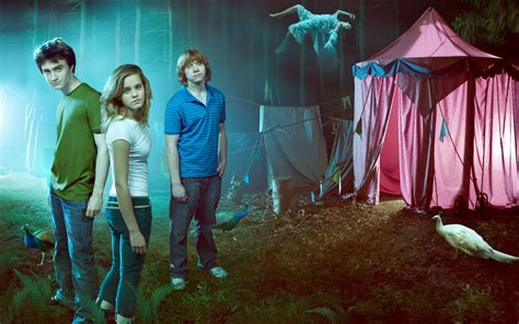 Hermione Granger and Harry Potter Crew HD Wide Wallpapers