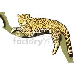Jaguar sitting in a tree on a branch clipart