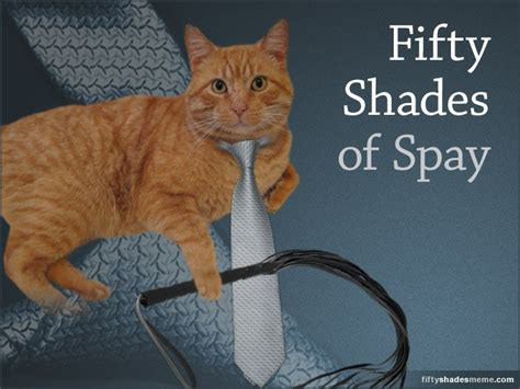 Fifty Shades of Funny – The Best Memes